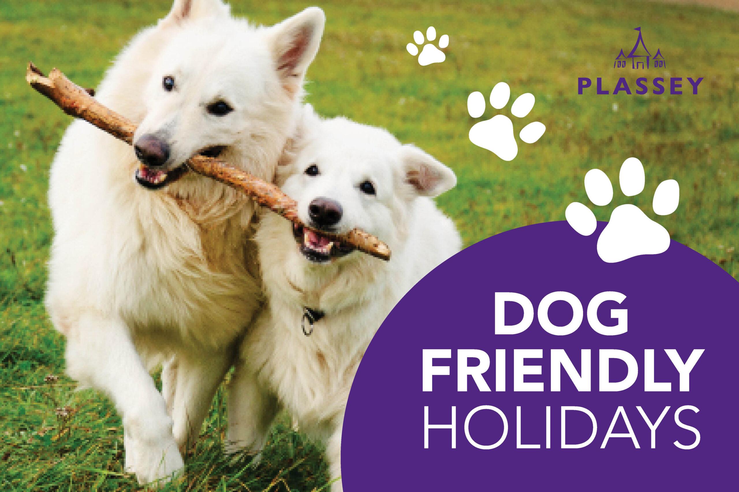 Plassey_Dog Friendly Holidays